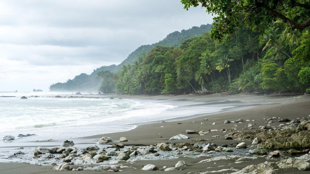 Tours in Costa Rica | the Top 4 Dominical Tours
