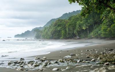 Tours en Costa Rica | El Top 4 Tours en Dominical
