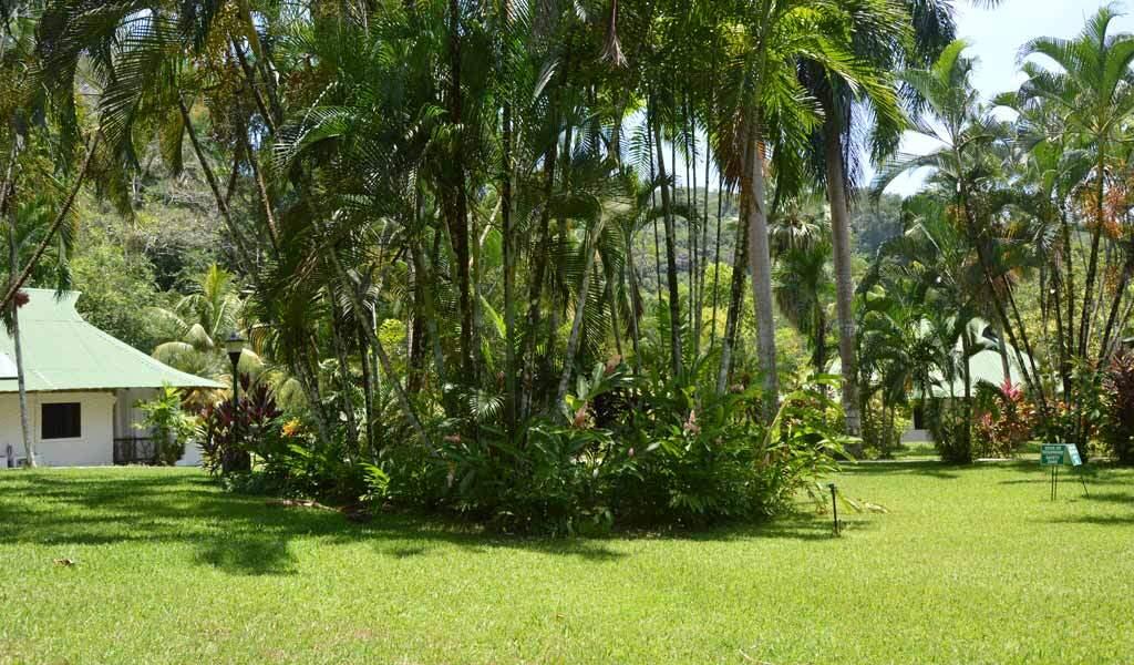 Hab-+-Garden-2-(7)-1024-600