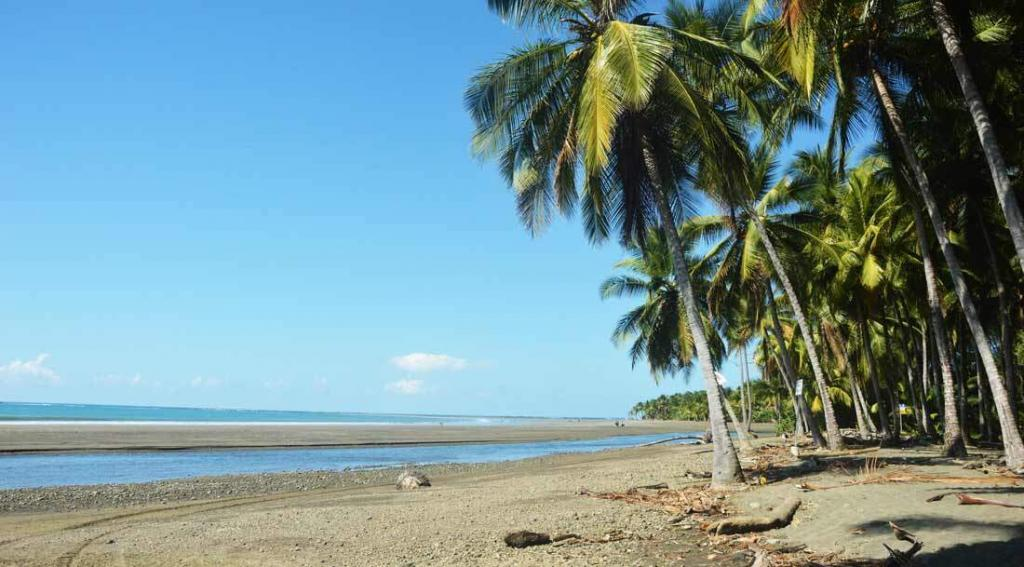 Top 5 things to do in Dominical