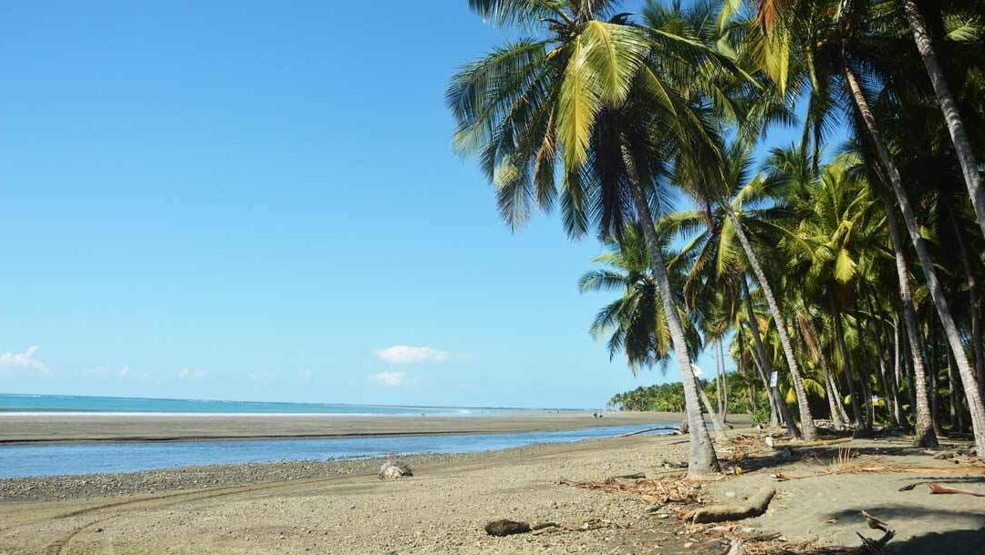 The top 5 things to do in Dominical, Costa Rica