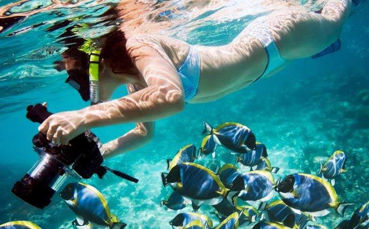 Snorkel Cano Island tours