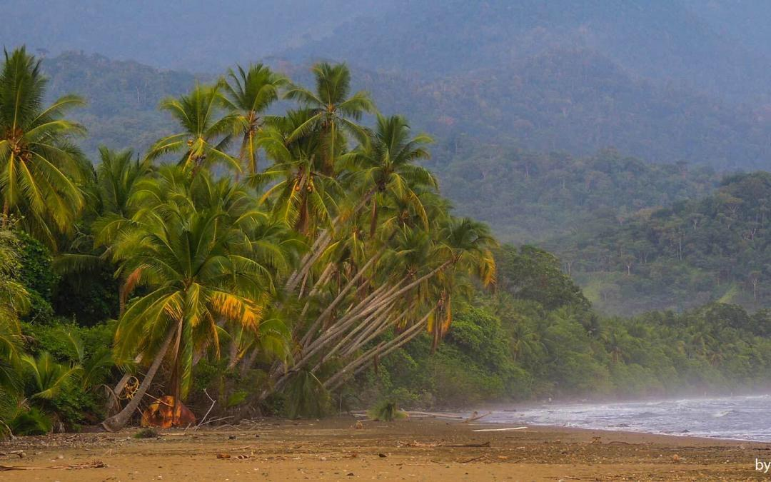 5 Awesome beaches in Costa Ballena, Costa Rica