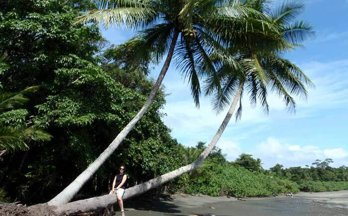 Beach Corcovado National Park Costa Rica